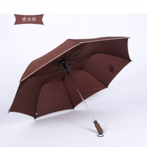 High quality Auto open 2 fold umbrella with logo print golf umbrella